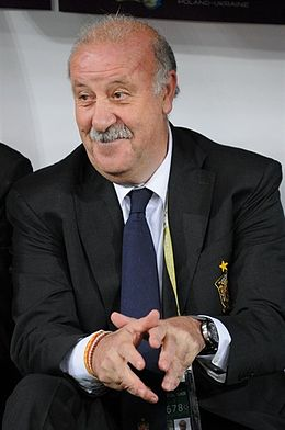 Vicente del Bosque Gonzalez Hairstyles